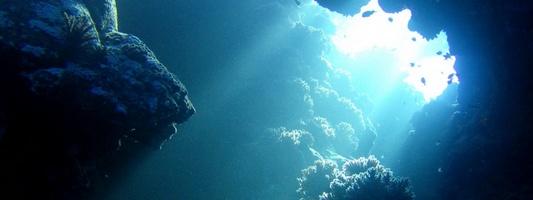 Zdjęcie podwodne